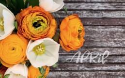 Wallpaper PC April 2019 Brushlettering Illustration Fotografie Blumen